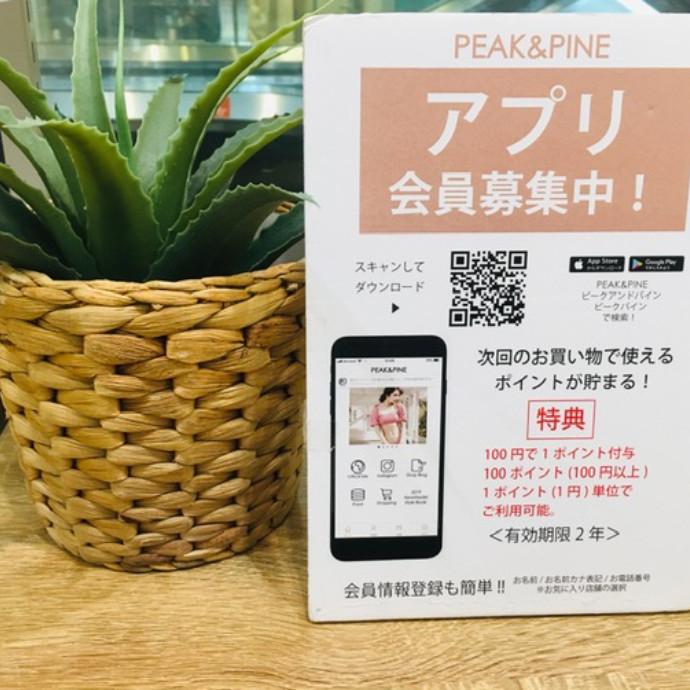 ♡PEAK&PINEアプリの登録はお済ですか?♡