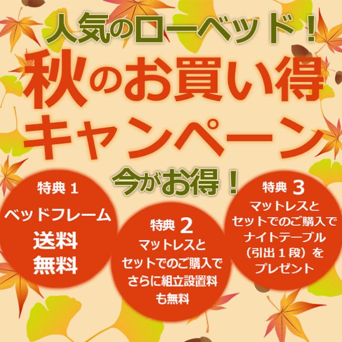★人気のローベッド★今がお得!!11/1㈭~