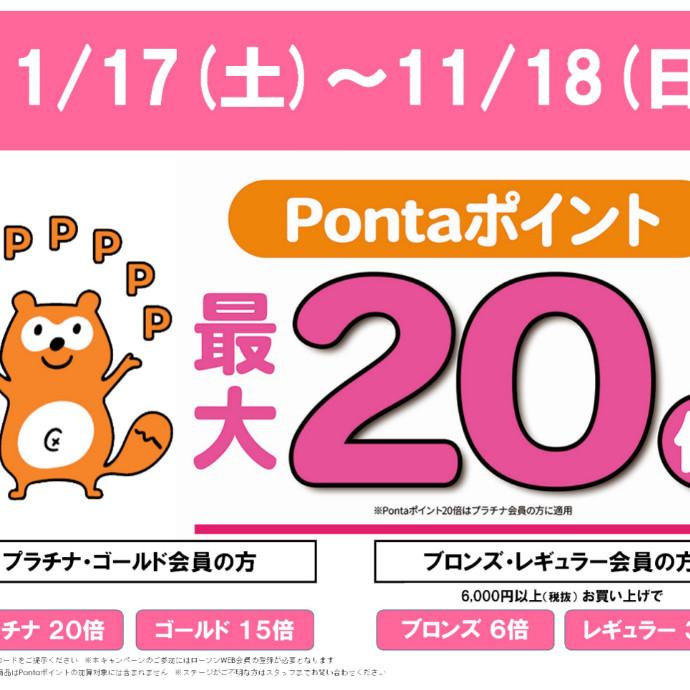 今週末11/17(土)~11/18(日)はポイントサービスデー♪