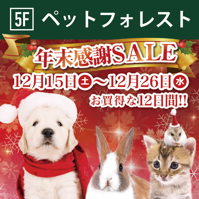 ◆5F ペットフォレスト「年末感謝セール」◆