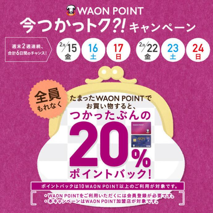 WAON POINT20%ポイントバックキャンペーン!