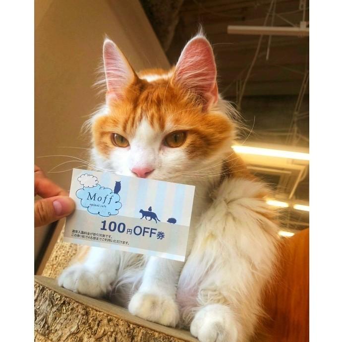 来園で100円OFF券がもらえる!