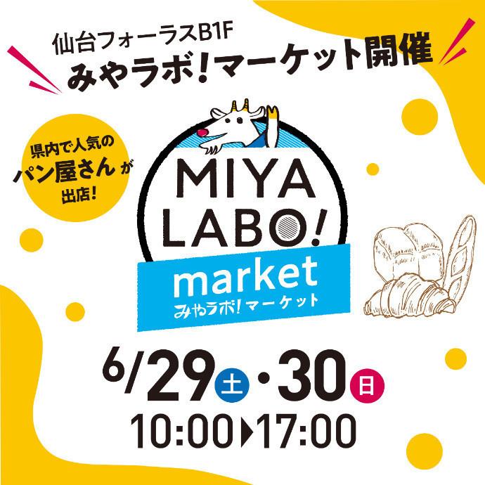 【MIYALABO!! market開催!!】