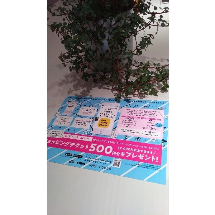 ・・・ショッピングチケット500円分プレゼント♪・・・