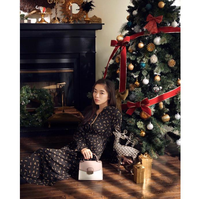 クリスマスコレクション.*·̩͙