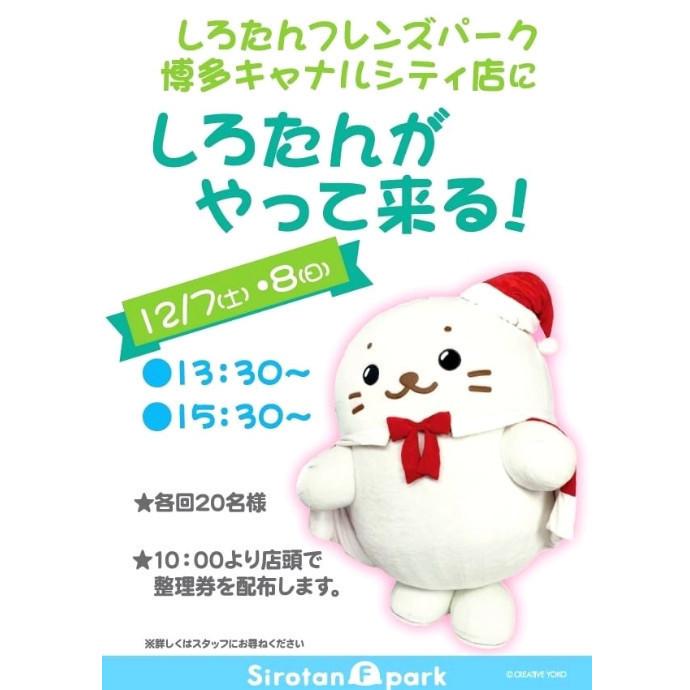 *【予告】12月7日・8日☆博多キャナルシティ店にしろたんがやって来る!*