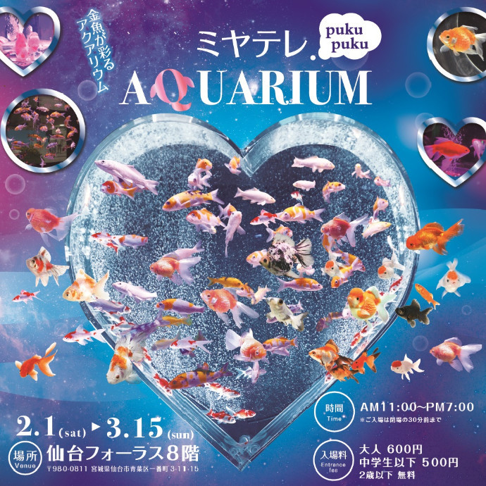 【2/1(SAT)~3/15(SUN)Limited SHOP】8F ミヤテレpukupukuアクアリウム