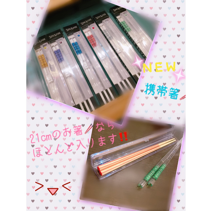 【新作】ケース付き箸【プラスチック】