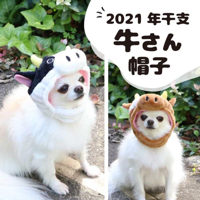 *2021年 丑年! お正月アイテム続々入荷*