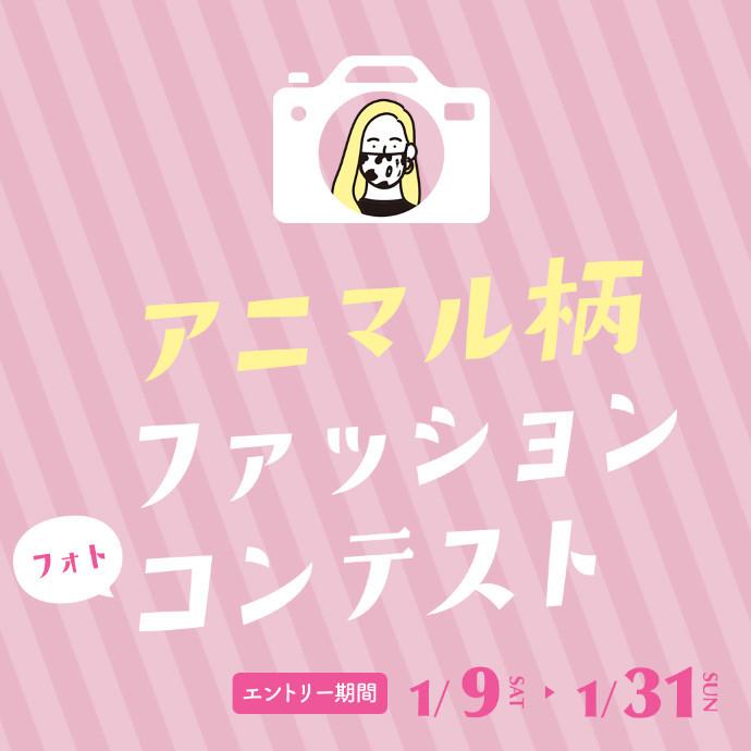 ~ アニマル柄ファッション「フォト」コンテスト