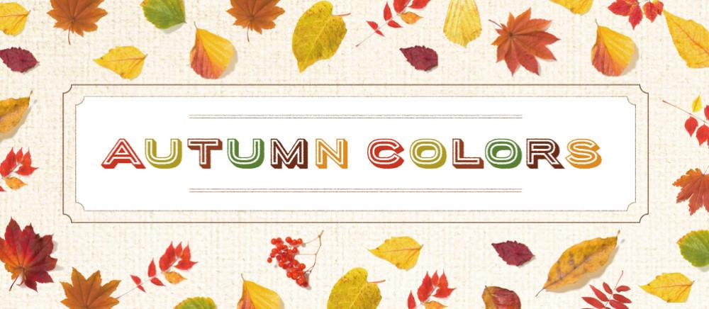 【秋の新作】