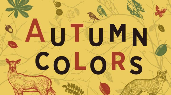秋色ファッション