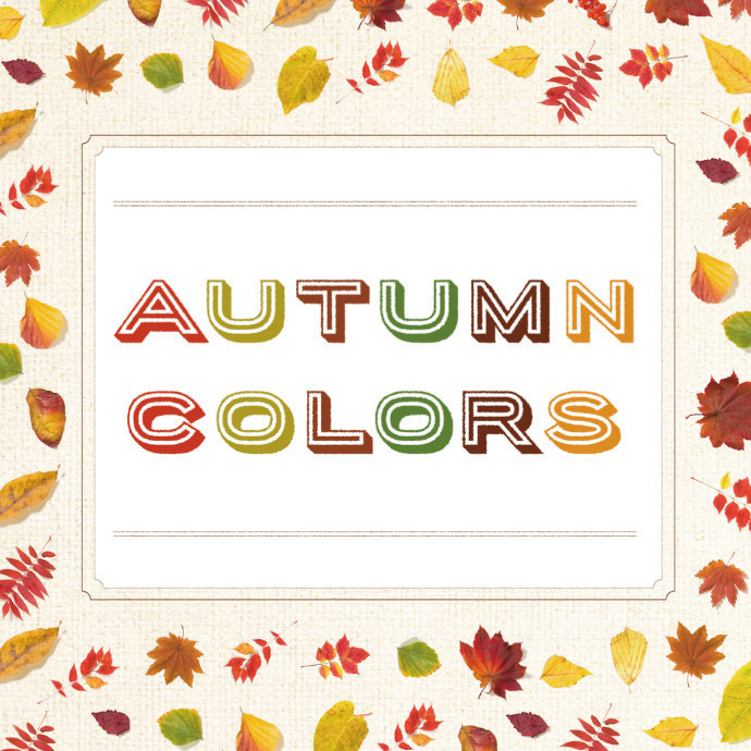 Autumn Collection&Item